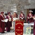 Święto wina w Amboise we Francji by Kentishman
