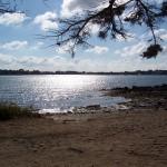 Brzeg jednej z wysp w Zatoce Morbihan by steve.grosbois