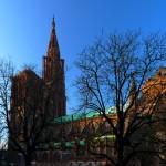Katedra Notre Dame w Strasburgu z oddali by by ...johann j.m.