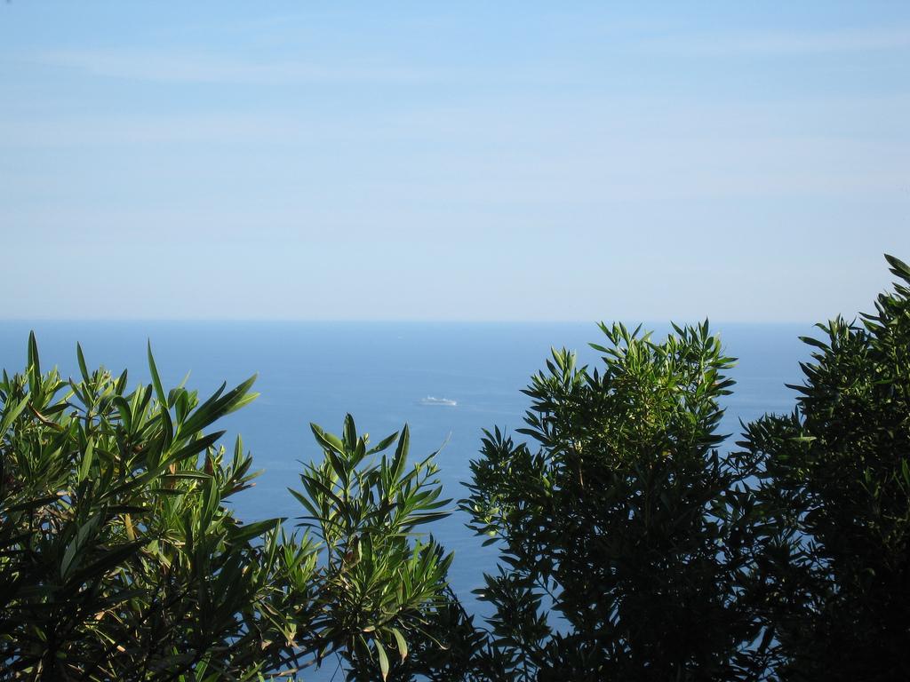 Morze Śródziemne - Południowa Francja by jeffwilcox