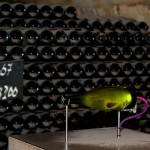 Nabijanie butelki szampana by Max Mayorov