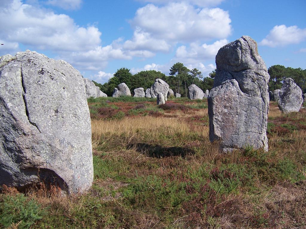 Skupisko kamieni - Morbihan - Francja - by steve.grosbois