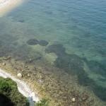Tak czysta woda jest na Lazurowym Wybrzeżu by strainu