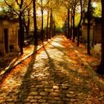 Aleja cmentarza Pere Lachaise -  by [phil h]