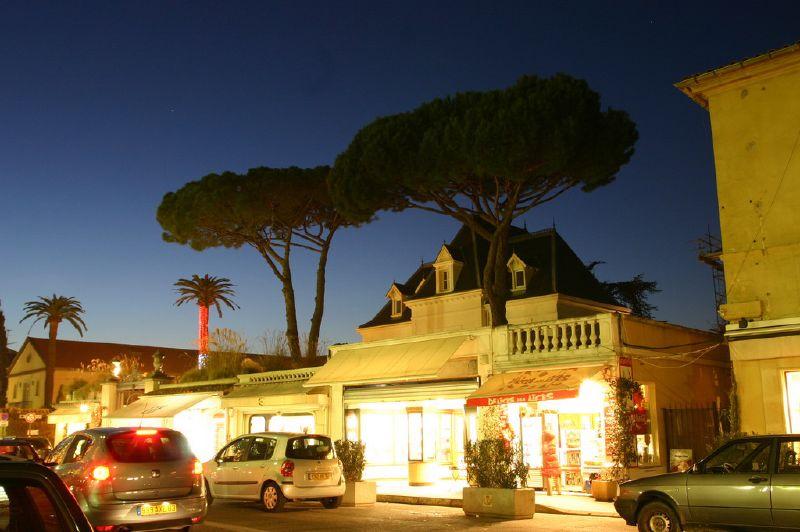 Dęby śródziemnomorskie - w nocy - przy ulicy w Saint Tropez we Francji - by derrickting