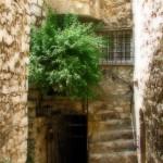 Jeden z malowniczych budynków  wmiasteczu St Paul de Vence -  by drelicious