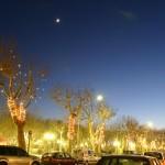 Oświetlone drzewa w Saint Tropez - by derrickting