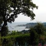 Roślinność - Saint Tropez - by jespahjoy