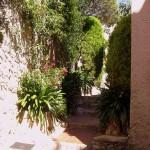Roślinność w wiosce Eze - by CHRIS230