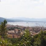 Saint Tropez zza krzaków - by Pata.
