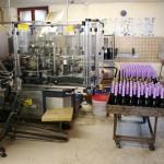 W fabryce Szampana - by Megan Mallen