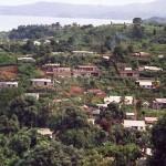 Mayotte, Mtsapere - by Planete-Vivante Marie Sophie-Kazamarie