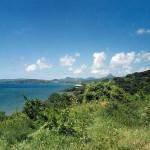 Mojotta - Wyspa
